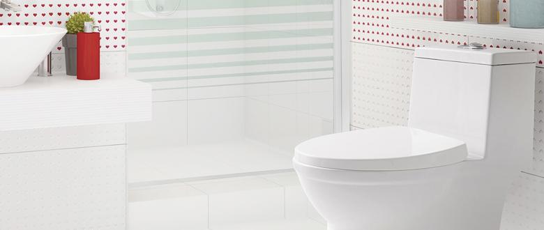 Elegí el sanitario indicado para tu baño  f8bd0f8c4135